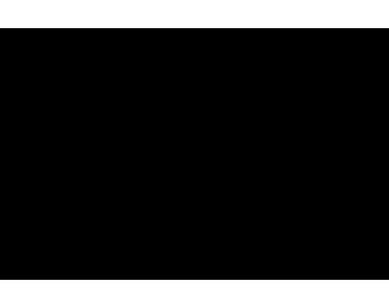 Iconos-0311